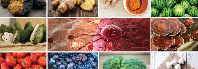 cancer-fighting-foods-800x280